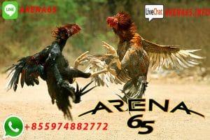 Daftar Taruhan Sabung Ayam Bonus Lebaran 2019